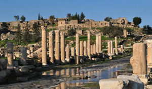 Jerash Ajloun Um Qais Day Tour from Amman 1