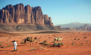 Wadi Rum Tour From Dead Sea 1
