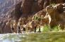 Wadi Mujib Siq Trail and Dead Sea from Amman  5
