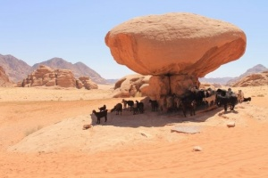 06 Hours Jeep Tour in Wadi Rum 1