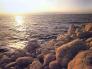 Dead Sea Day Trip from Aqaba City 2