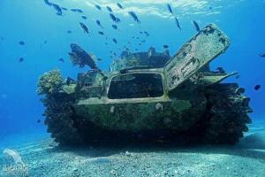 Red Sea Experience (Snorkeling) & Diving tours in Aqaba Jordan  02